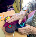 Tangible Memories project with older adults in care home settings - creating sensory objects.